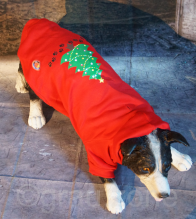 LED Hundebekleidung Hunde-Pullover Rot, blinkender und leuchtender Weihnachtsbaum in S M L XL