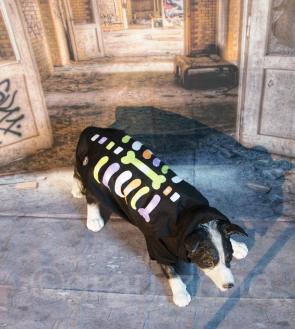 LED Hundebekleidung Hunde-Pullover Schwarz blinkende und leuchtende Hundemode Skelett Bunt in S M L XL