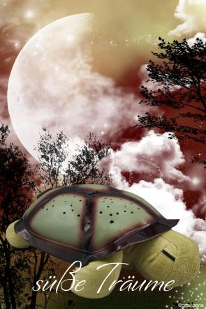 LED Lampe Schildkröte