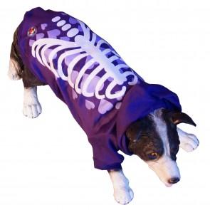 Hundepullover mit Licht