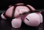 Led Lampe Schildkröte Rosa